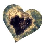 woodheart