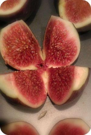 #figs #honey #cinnamon #grilled