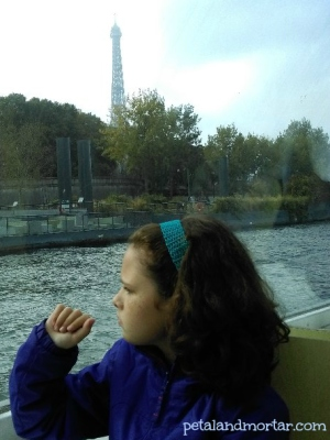 #batobus #seine #paris #riverboat