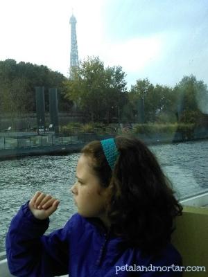 #batobus #seine #paris #riverboat